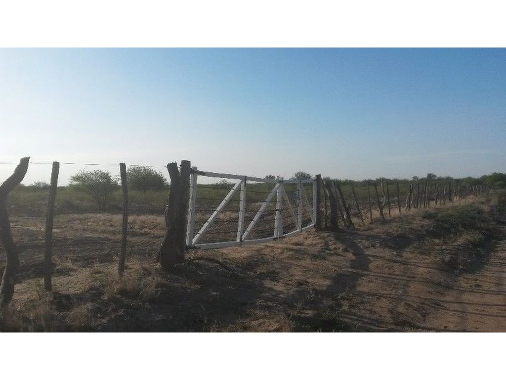 Oportunidad Excelente Campo Agrícola Ganadero Serrezuela